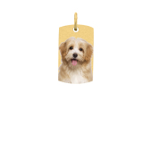 Dog Tag Photo Necklace (Small)